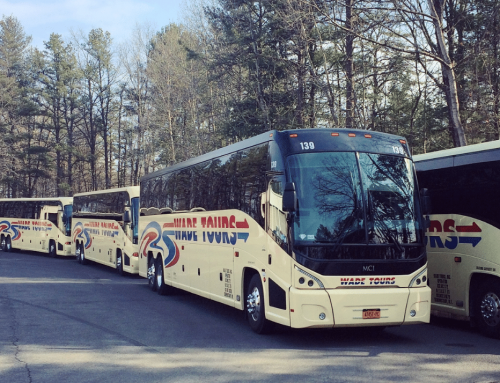 Did You Know We Offer Different Transportation Services?